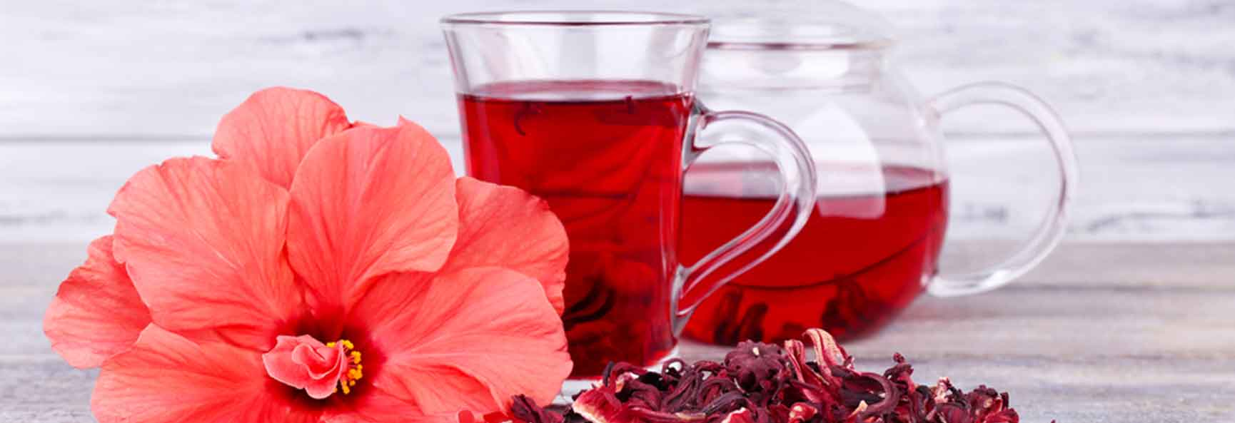 Hibiscus Infusion & Blood Pressure