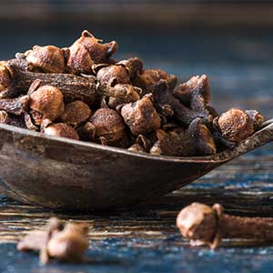 Clove Infusion